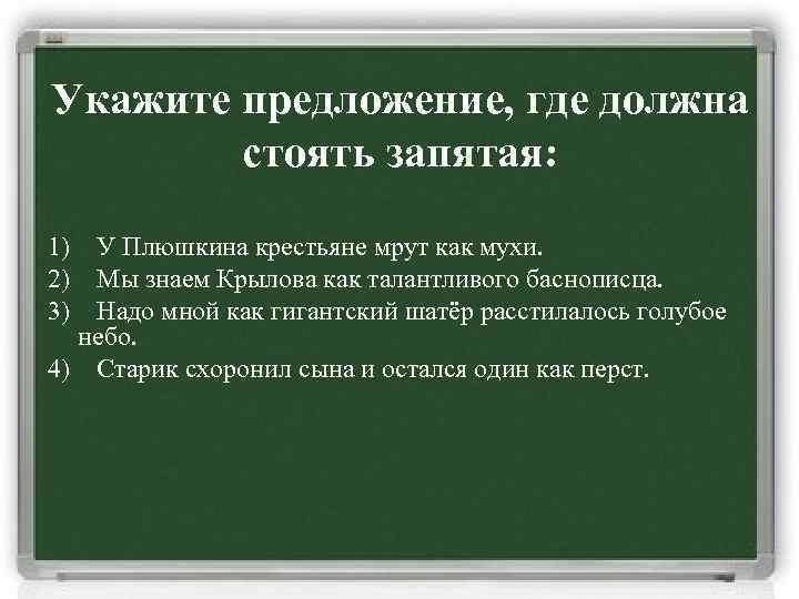 Укажите предложение, где должна стоять запятая: 1) У Плюшкина крестьяне мрут как мухи. 2)