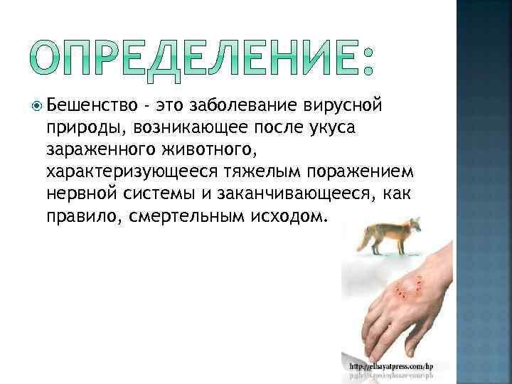 Бешенство - это заболевание вирусной природы, возникающее после укуса зараженного животного, характеризующееся тяжелым