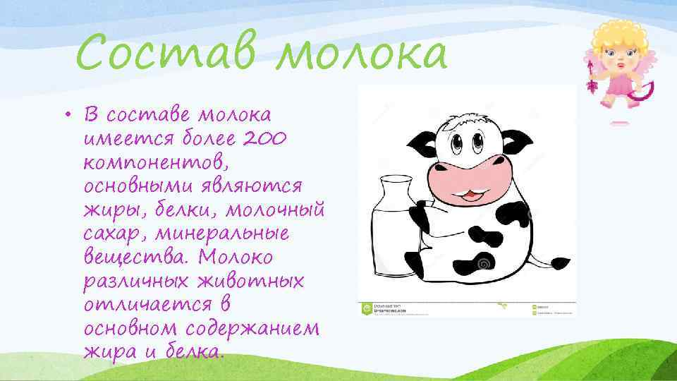 Состав молока • В составе молока имеется более 200 компонентов, основными являются жиры, белки,