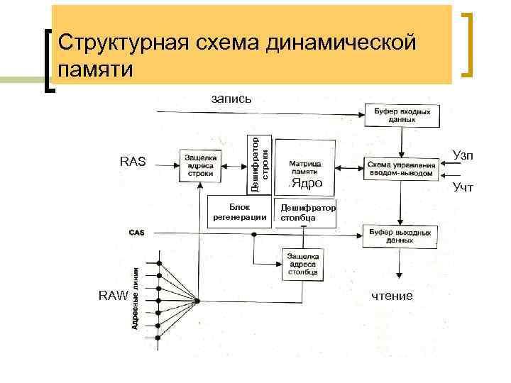 Структурная схема динамической памяти RAS Дешифратор строки запись Блок регенерации RAW Узп Ядро Учт