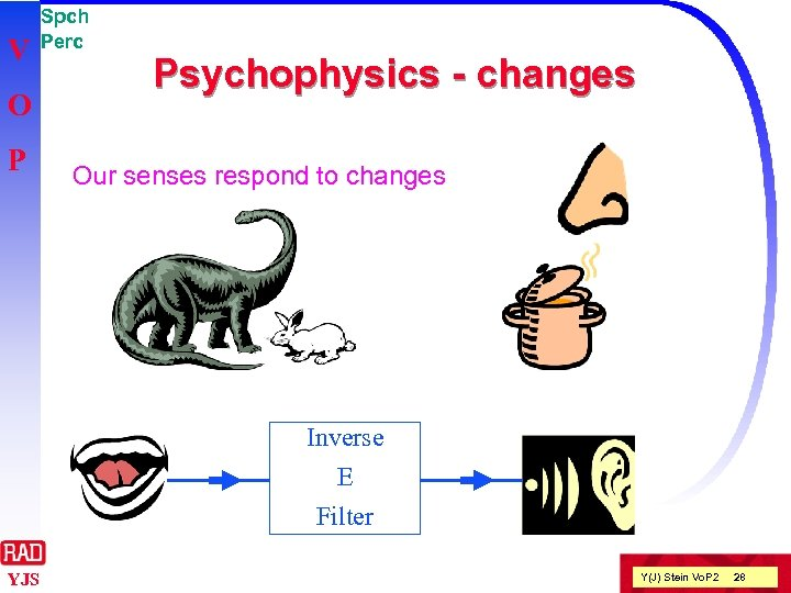 V O P Spch Perc Psychophysics - changes Our senses respond to changes Inverse
