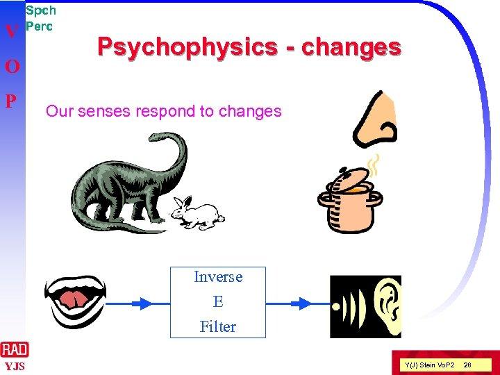 V O P Spch Perc Psychophysics - changes Our senses respond to changes Inverse