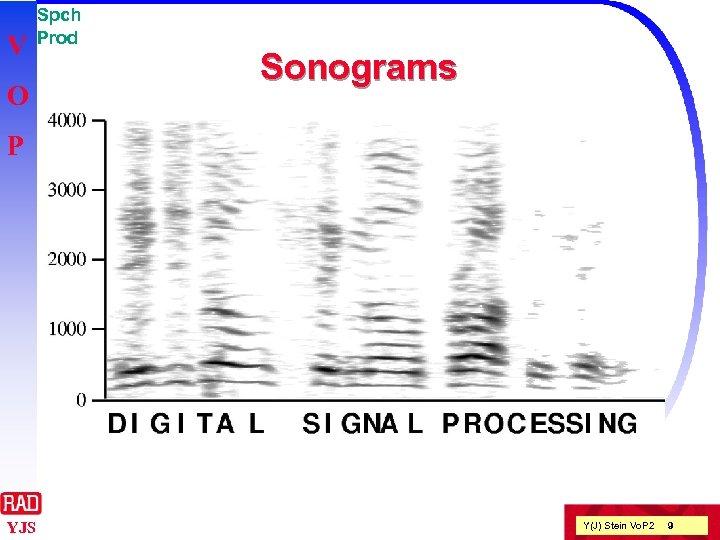 V O Spch Prod Sonograms P YJS Y(J) Stein Vo. P 2 9