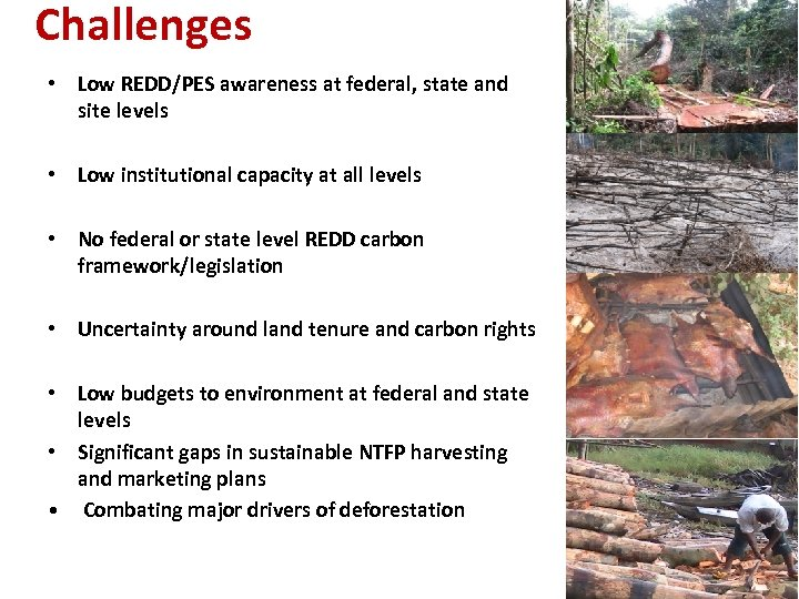 Challenges • Low REDD/PES awareness at federal, state and site levels • Low institutional