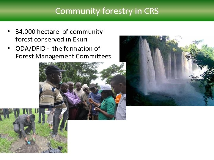 Community forestry in CRS • 34, 000 hectare of community forest conserved in Ekuri