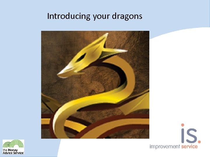 Introducing your dragons True or False? False