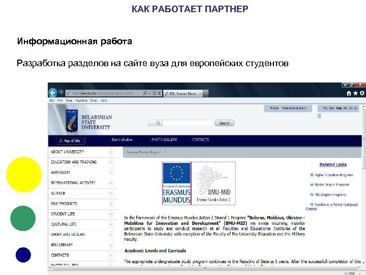 КАК РАБОТАЕТ ПАРТНЕР Информационная работа Разработка разделов на сайте вуза для европейских студентов