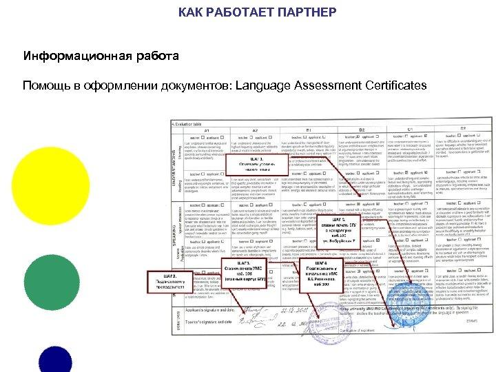 КАК РАБОТАЕТ ПАРТНЕР Информационная работа Помощь в оформлении документов: Language Assessment Certificates