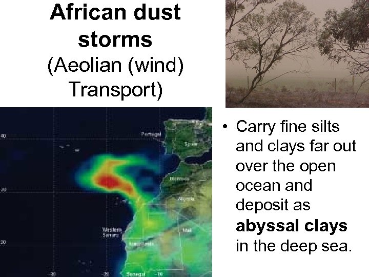 African dust storms (Aeolian (wind) Transport) • Carry fine silts and clays far out