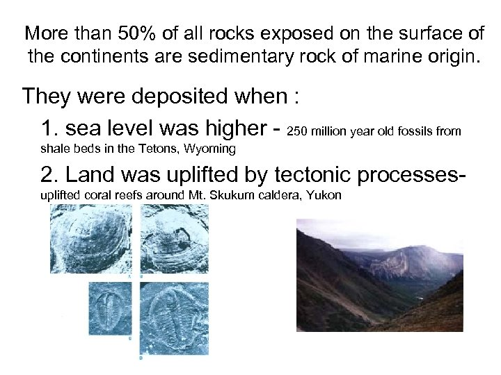 More than 50% of all rocks exposed on the surface of the continents are