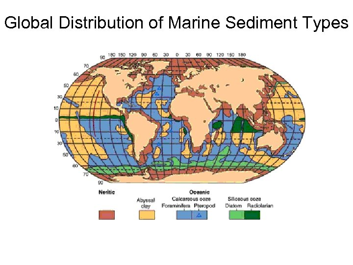Global Distribution of Marine Sediment Types