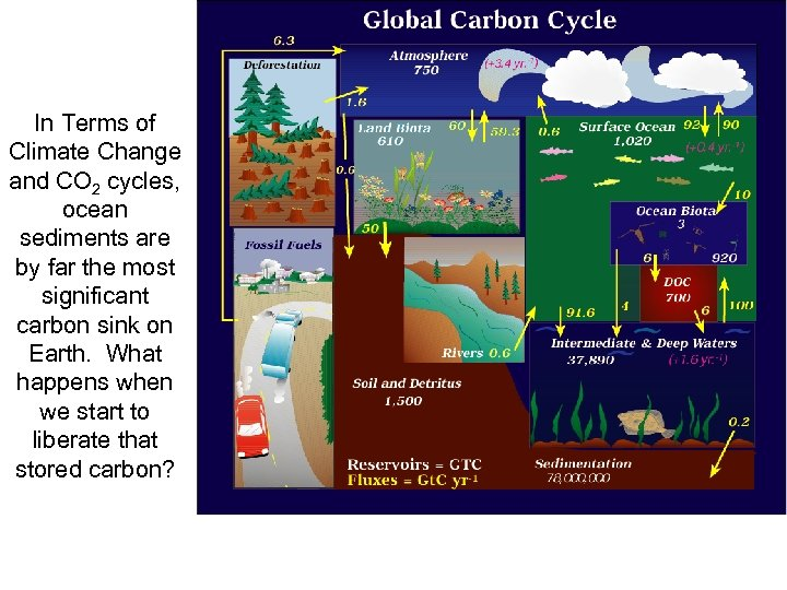 In Terms of Climate Change and CO 2 cycles, ocean sediments are by far