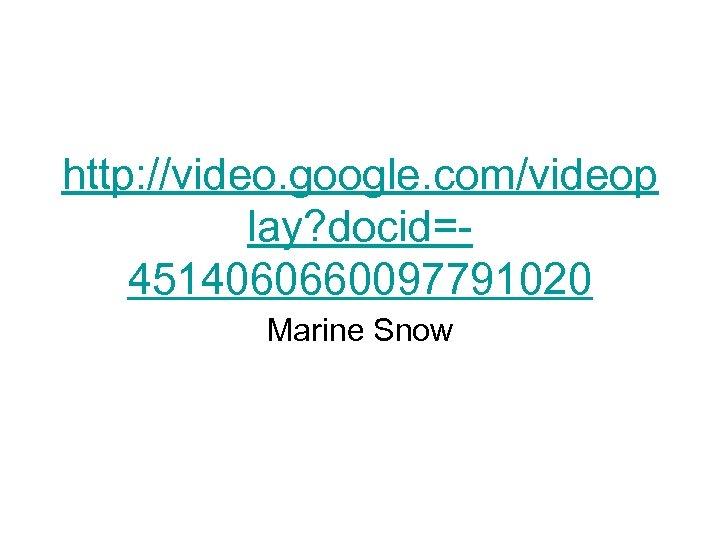 http: //video. google. com/videop lay? docid=4514060660097791020 Marine Snow