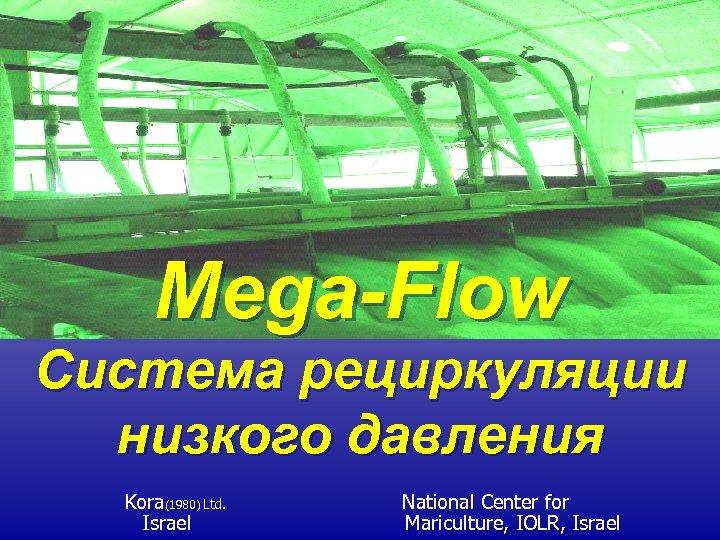 Mega-Flow Система рециркуляции низкого давления Kora(1980) Ltd. Israel National Center for Mariculture, IOLR, Israel