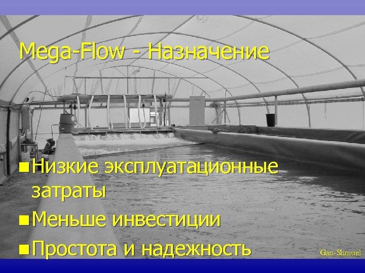 Mega-Flow - Назначение n Низкие эксплуатационные затраты n Меньше инвестиции n Простота и надежность