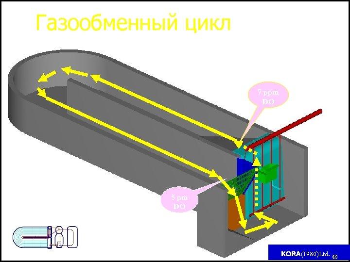 Газообменный цикл 7 ppm DO DO - Dissolve oxygen (растворенный кислород) 5 pm DO