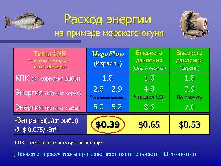 Расход энергии на примере морского окуня Типы СЗВ (системы замкнутого водоснабжения) КПК (кг корма/кг