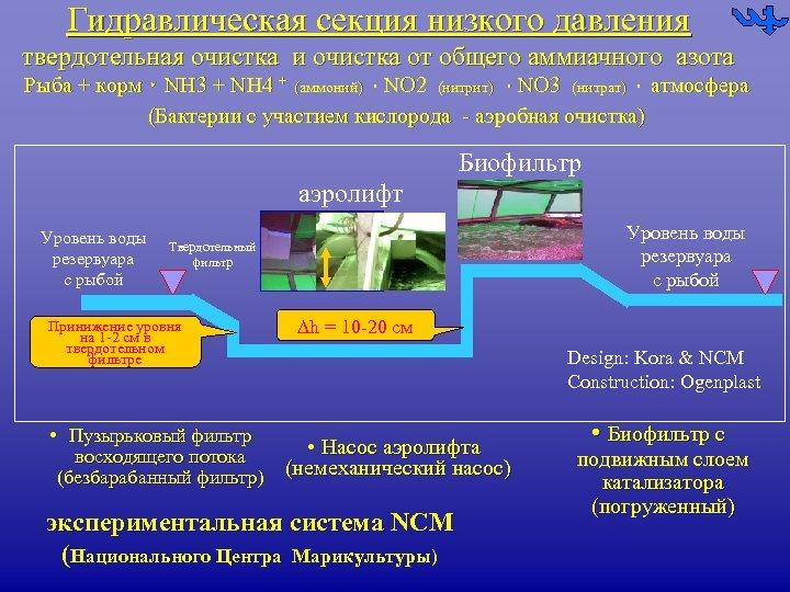 Гидравлическая секция низкого давления твердотельная очистка и очистка от общего аммиачного азота Рыба +