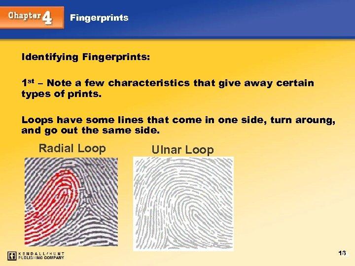 Fingerprints Identifying Fingerprints: 1 st – Note a few characteristics that give away certain