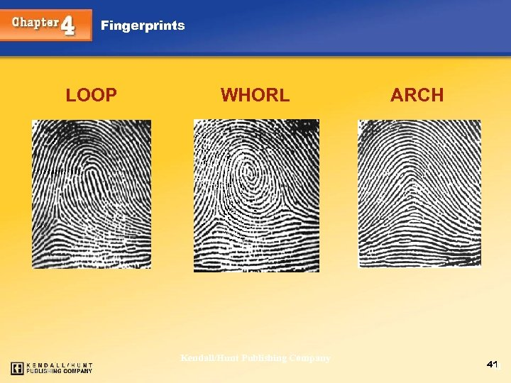 Fingerprints LOOP Chapter 4 WHORL Kendall/Hunt Publishing Company ARCH 41 41