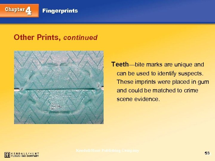 Fingerprints Other Prints, continued Teeth—bite marks are unique and can be used to identify