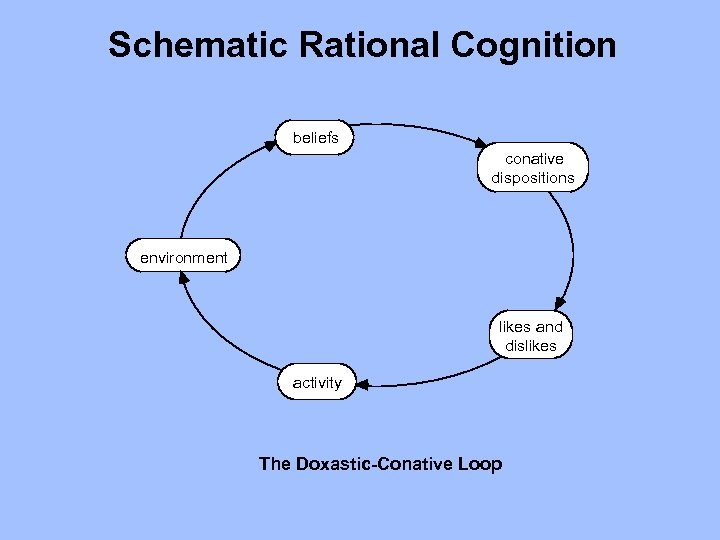 Schematic Rational Cognition beliefs conative dispositions environment likes and dislikes activity The Doxastic-Conative Loop