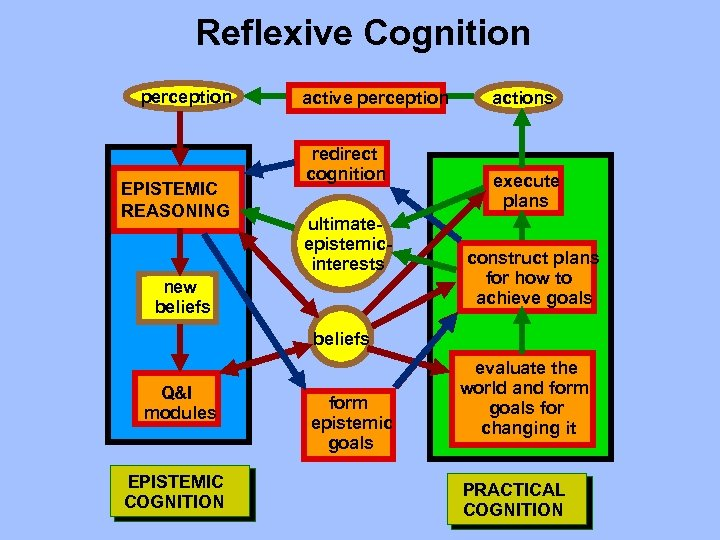 Reflexive Cognition perception EPISTEMIC REASONING active perception redirect cognition ultimateepistemicinterests new beliefs actions execute