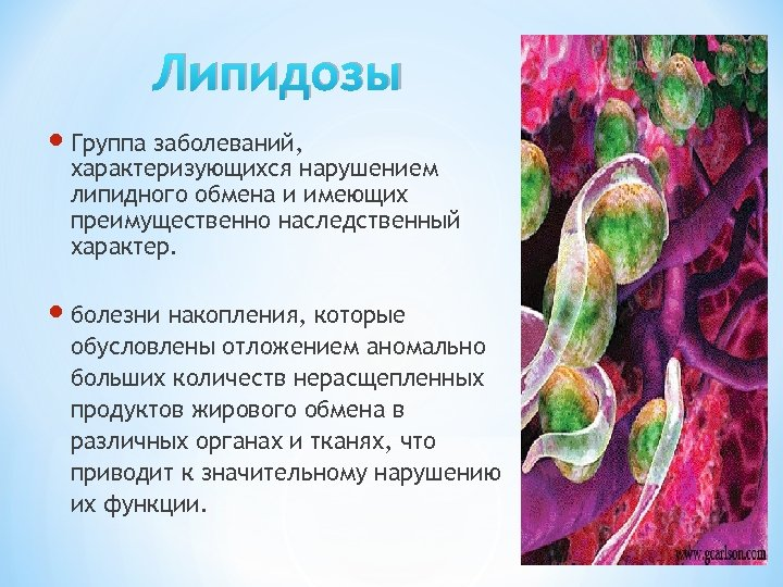 Липидозы Группа заболеваний, характеризующихся нарушением липидного обмена и имеющих преимущественно наследственный характер. болезни накопления,