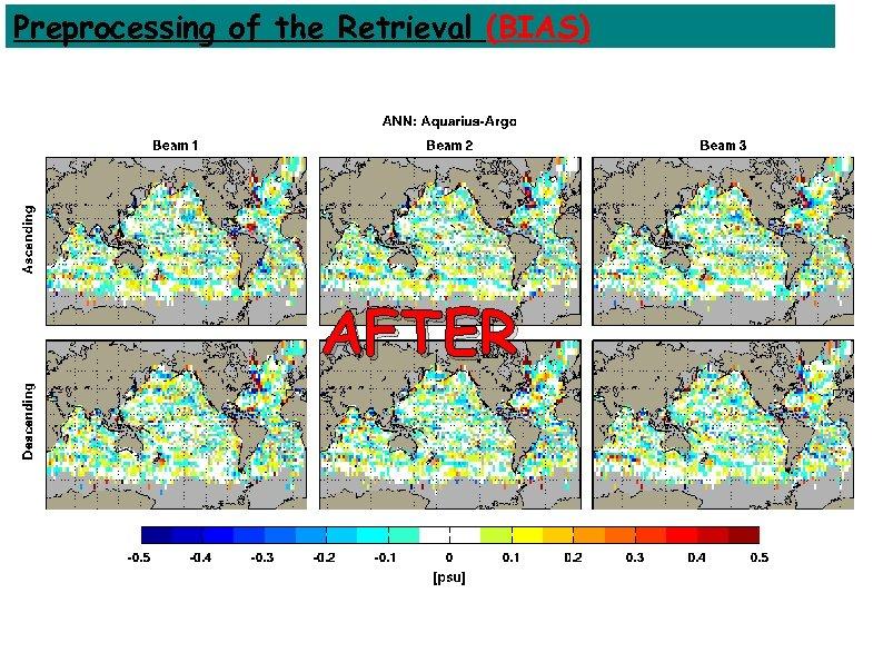 Preprocessing of the Retrieval (BIAS) AFTER