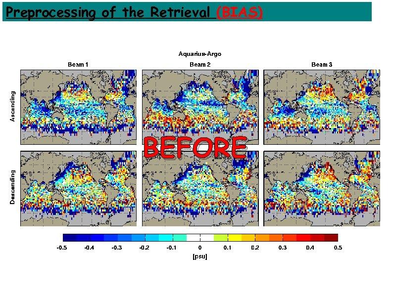 Preprocessing of the Retrieval (BIAS) BEFORE