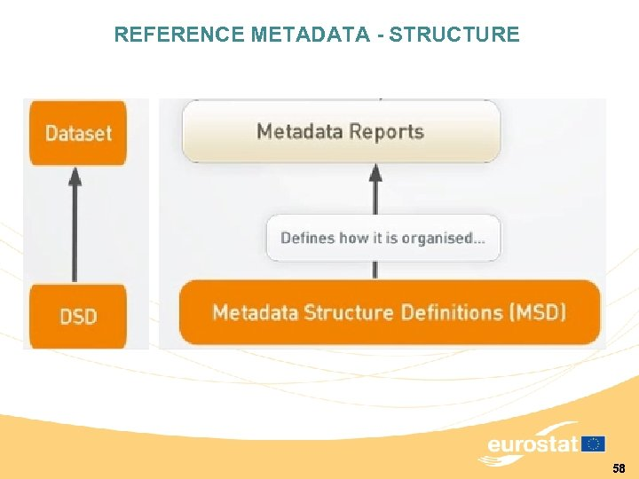 REFERENCE METADATA - STRUCTURE 58