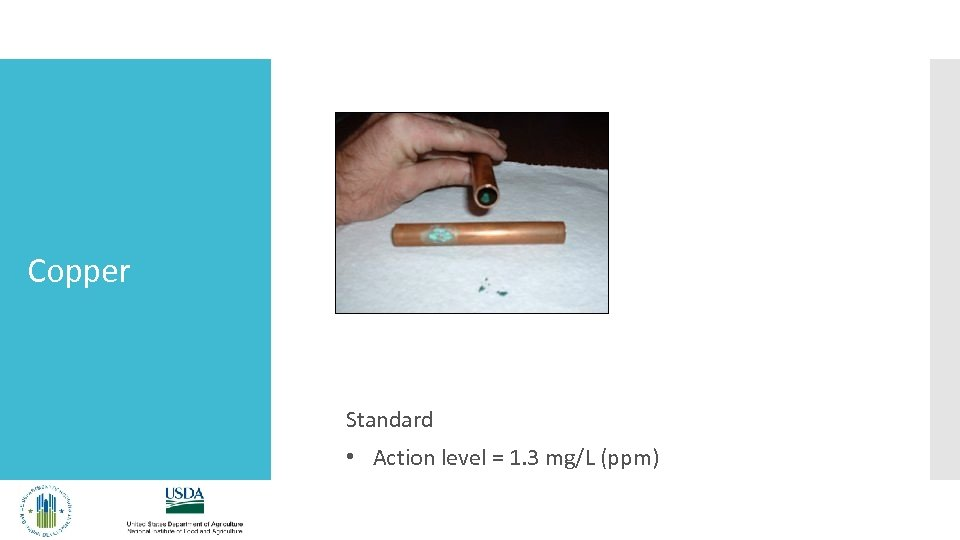 Copper Standard • Action level = 1. 3 mg/L (ppm)