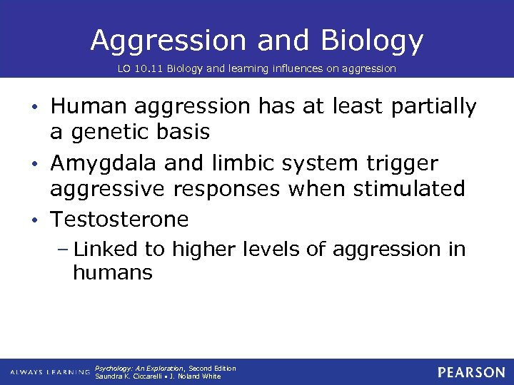 Aggression and Biology LO 10. 11 Biology and learning influences on aggression • Human