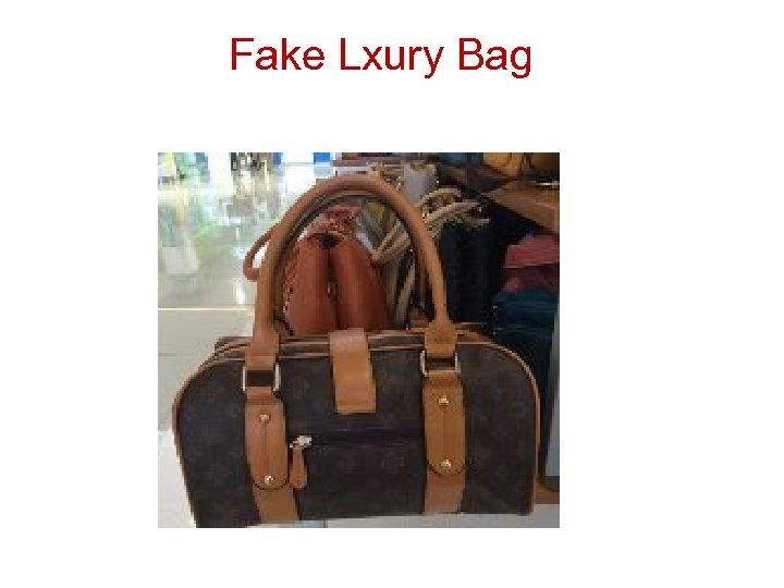 Fake Lxury Bag