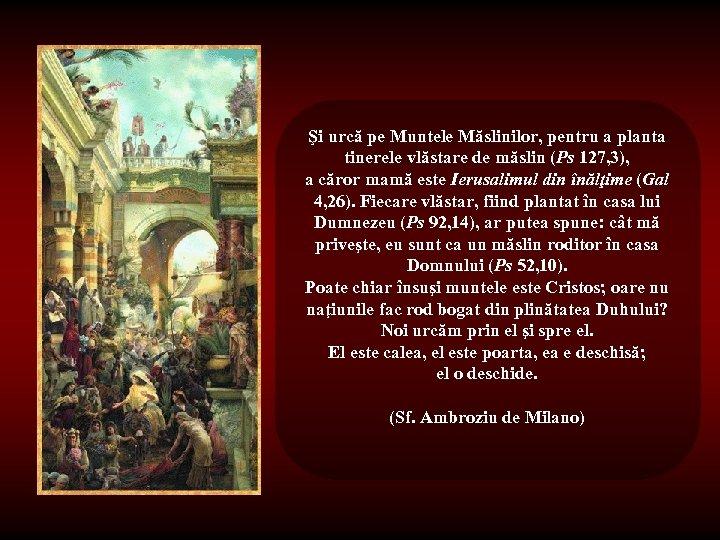 Şi urcă pe Muntele Măslinilor, pentru a planta tinerele vlăstare de măslin (Ps 127,