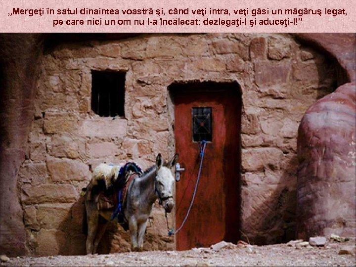"""""""Mergeţi în satul dinaintea voastră şi, când veţi intra, veţi găsi un măgăruş legat,"""