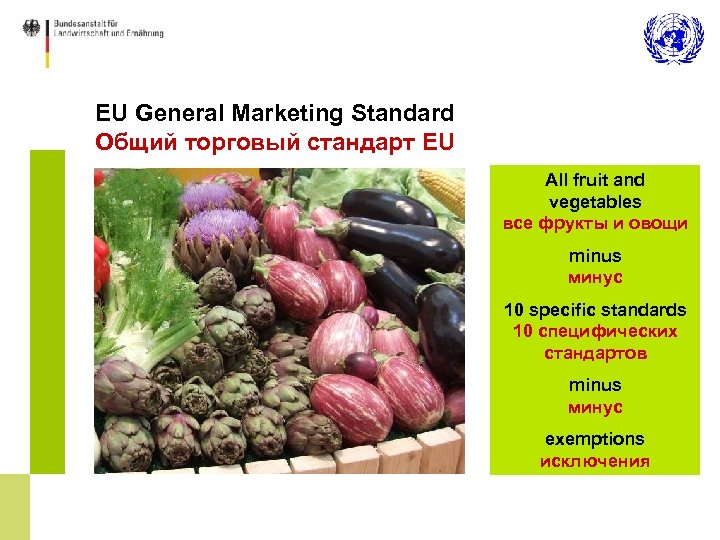 EU General Marketing Standard Общий торговый стандарт EU All fruit and vegetables все фрукты