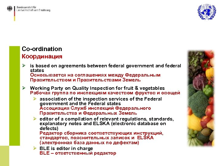 Co-ordination Координация Ø is based on agreements between federal government and federal states Основывается