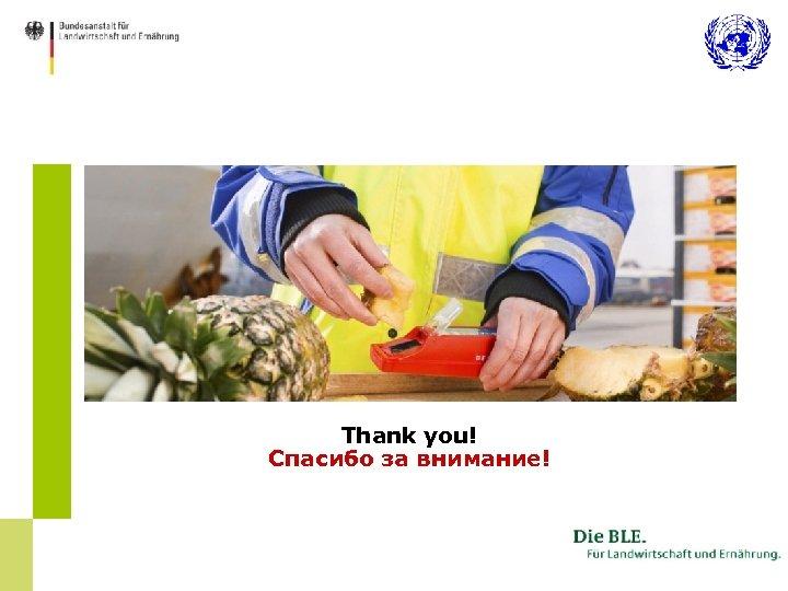 Thank you! Спасибо за внимание!