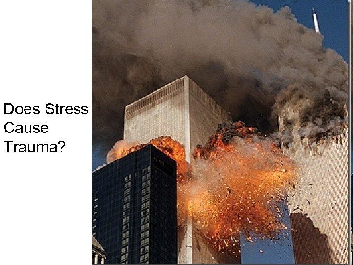Does Stress Cause Trauma?
