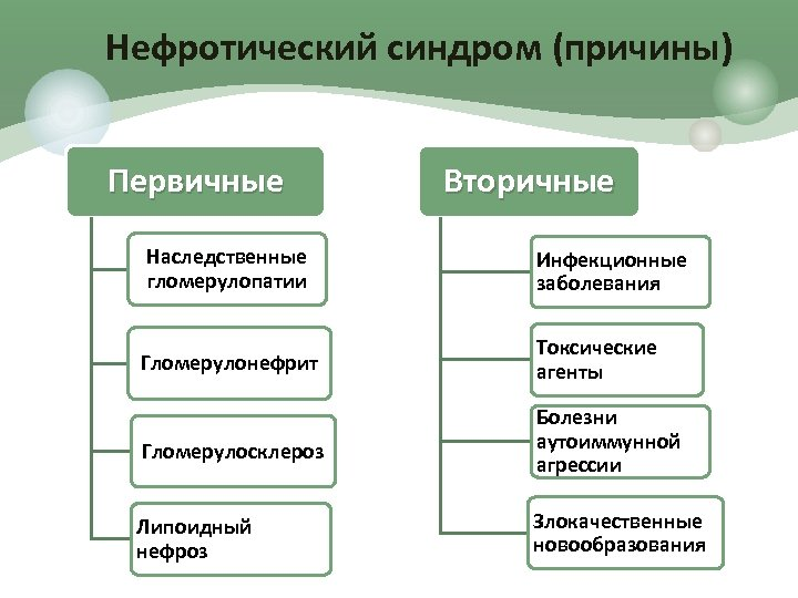 Нефротический синдром (причины) Первичные Вторичные Наследственные гломерулопатии Инфекционные заболевания Гломерулонефрит Токсические агенты Гломерулосклероз Болезни