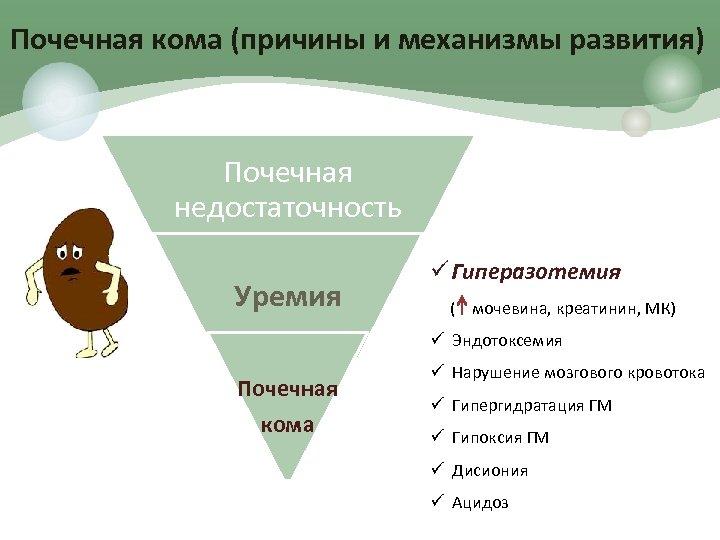 Почечная кома (причины и механизмы развития) Почечная недостаточность Уремия ü Гиперазотемия ( мочевина, креатинин,
