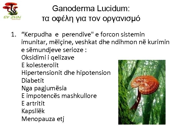 "Ganoderma Lucidum: τα οφέλη για τον οργανισμό 1. ""Kerpudha e perendive"