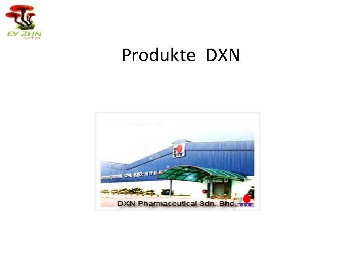 Produkte DXN