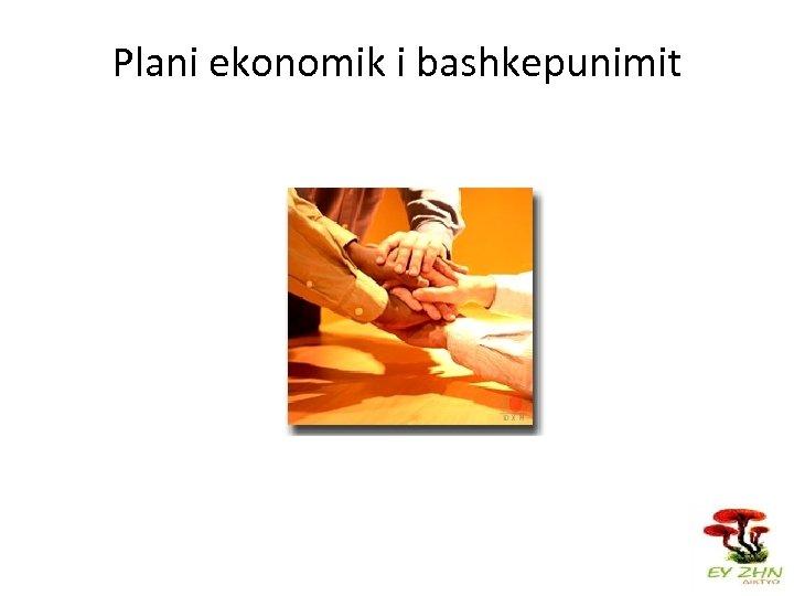 Plani ekonomik i bashkepunimit
