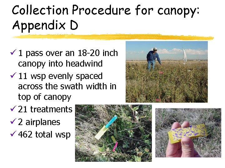 Collection Procedure for canopy: Appendix D ü 1 pass over an 18 -20 inch