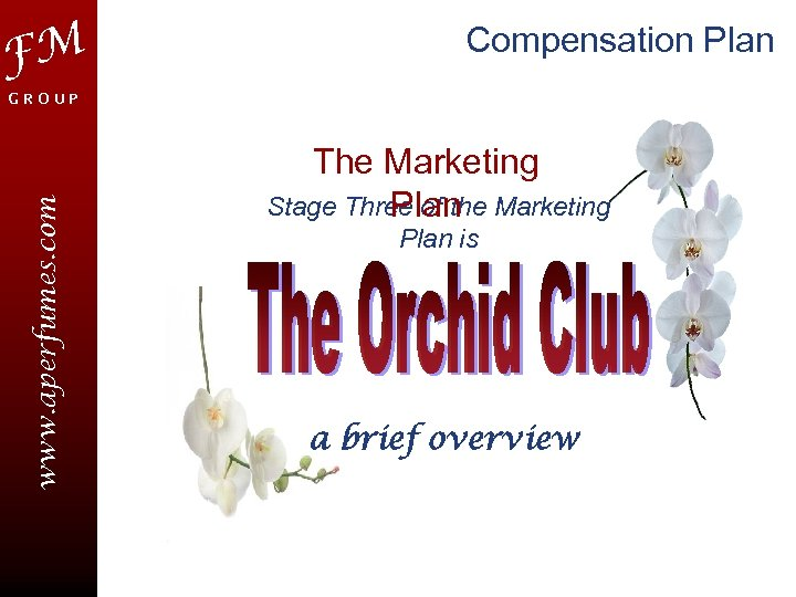 FM Compensation Plan www. aperfumes. com GROUP The Marketing Stage Three of the Marketing
