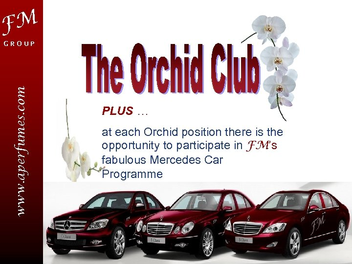 FM www. aperfumes. com GROUP PLUS … at each Orchid position there is the