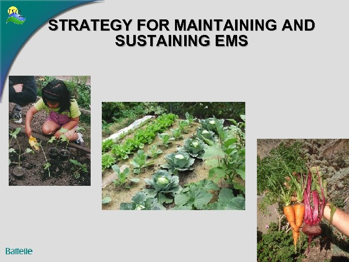 STRATEGY FOR MAINTAINING AND SUSTAINING EMS 3