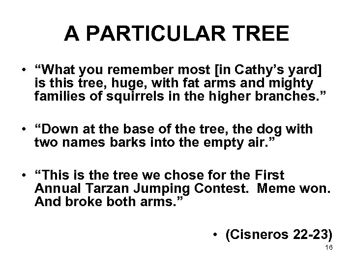 "A PARTICULAR TREE • ""What you remember most [in Cathy's yard] is this tree,"